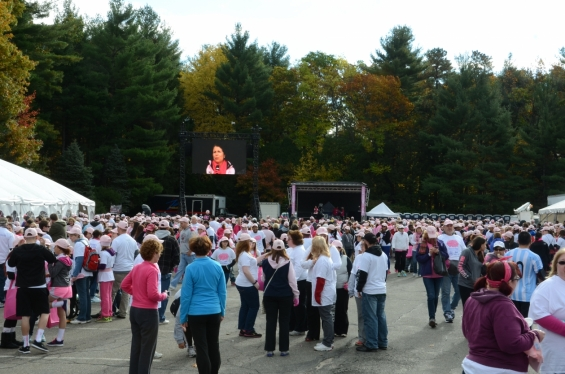 2014 Rays of Hope Run / Walk Toward the Cure of Breast Cancer
